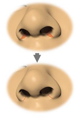 Fig1-1-1.jpg