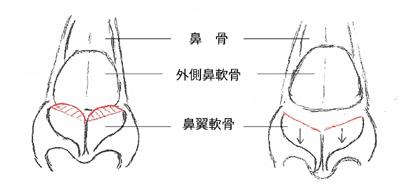 Fig2-1.jpg