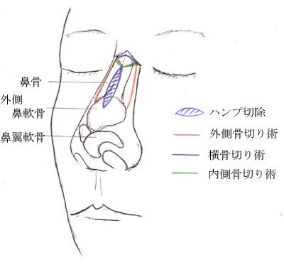Fig3-2.jpg