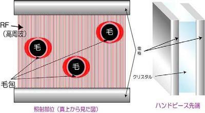 Fig2-3.jpg